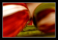 Abstract Photos For Sale Online 05