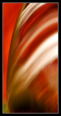 Abstract Photos For Sale 29