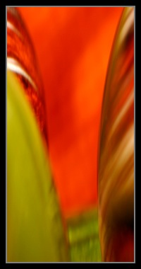 Abstract Photos For Sale 30