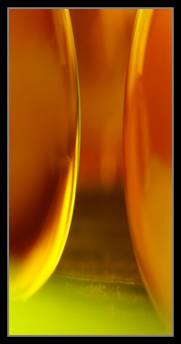 Abstract Photos For Sale 34