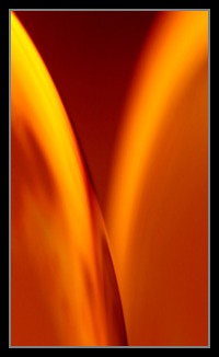 Abstract Photos For Sale Online 35