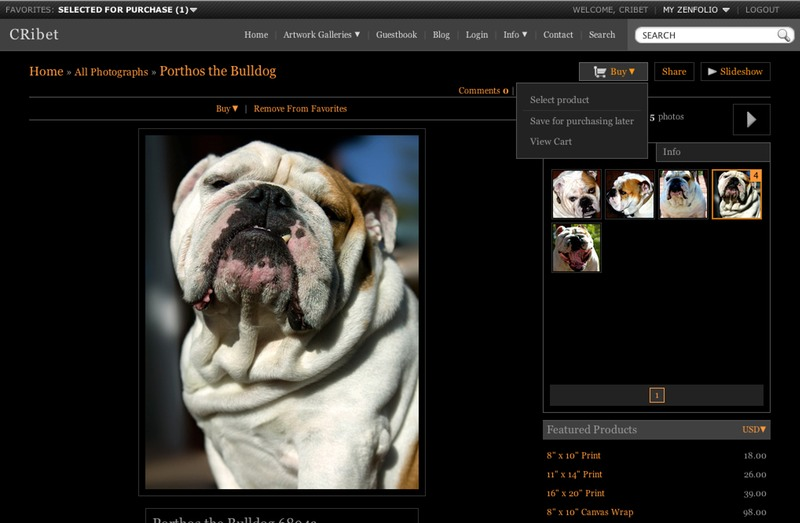 Porthos the Bulldog Buy B