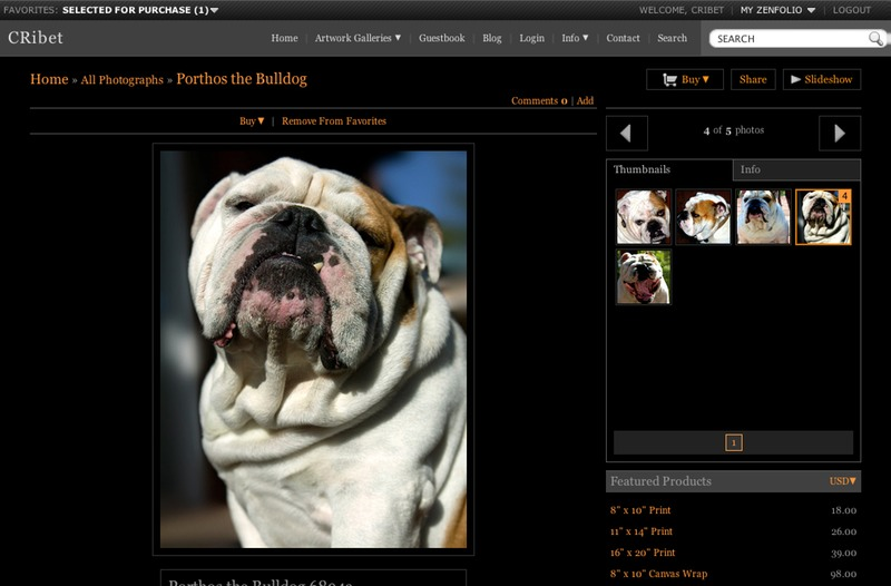Porthos the Bulldog Detail Page