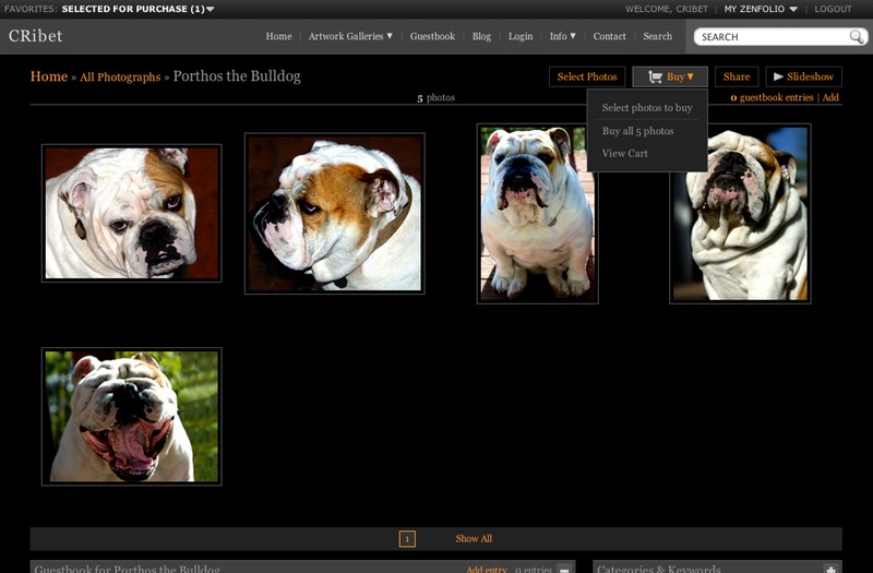 Porthos the Bulldog Gallery Buy Hover